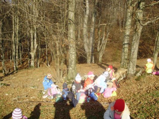 Drumetii pentru copii 2008