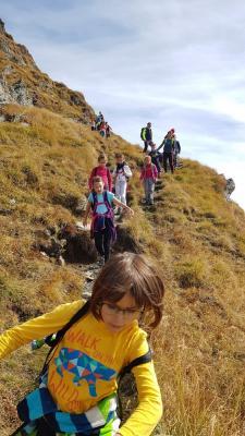 Drumetii pentru copii 2019